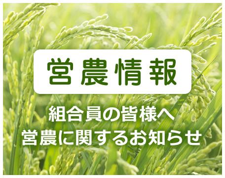 営農情報 組合員の皆様へ 営農に関するお知らせ