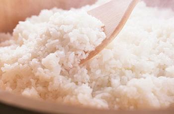 今月のおすすめ食材 米